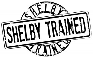 shelby-trained