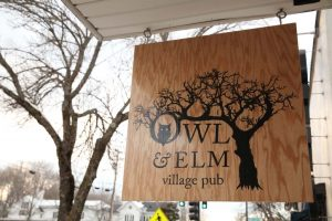 owl-and-elm