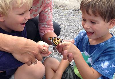 monarchs_slider