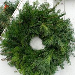 Fir wreath