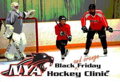 NYA Black Friday Hockey Clinic