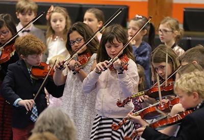 NYA LS Strings