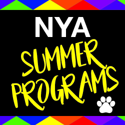 NYA Summer Camp Button