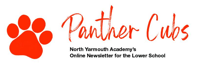 Panther Cubs Newsletter Header 2020